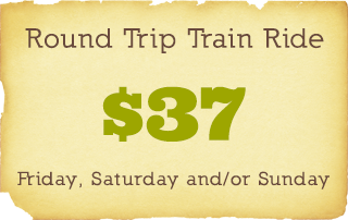 Ticket-RoundTripTrainRide